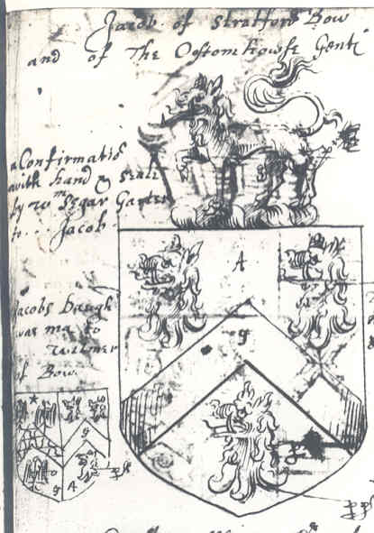 hildebrand family crest. ARMS OF THIS FAMILY